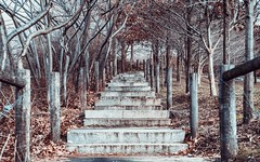Let's go for a stroll... (cesar.toribio1218) Tags: naturalbeauty stairs autumncolors naturescolors beautifulview abeautifulplace abeautifulmoment nature