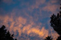 DSC_2282 (Alex Cernichiari) Tags: lasvegas las vegas night nikon nikonz6 fremont fremontstreet neon nightphotography
