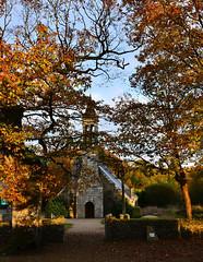 les deux chênes creux, quatre fois centenaires, de locmaria-berrien (eric-foto) Tags: locmariaberrien nikond800 bretagne calvaire chruch église breizh brittany bzh couleurs arbrescentenaires pennarbed finistère enclos enclosparoissial
