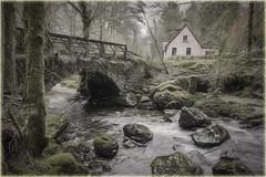 Ardgartan(Scotland) (williamwalton001) Tags: pentaxart scotland stone bridge building trees texture tones timber water woodlands weather