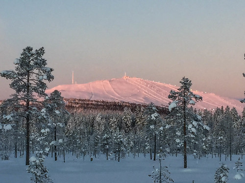 The view of xc-skiing