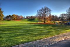 64-Britzer Garten_181116_N- 30 (sigkan) Tags: deutschland berlin britzergarten hdr nikond700 nikon2485mmf284