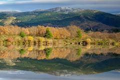 Segovia, Embalse del Pontón (marianoabad1) Tags: segovia embalsedelpontón mzuiko1240mmf28pro mzuiko omdem1markii olympus naturaleza fotografíadenaturaleza nature naturephotography fotografíadepaisaje paisaje landscapephotography landscape