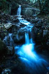 Viendola venir (candi...) Tags: agua rio riera corriente bosque arboles naturaleza nature saltodeagua piedras rocas sonya77 airelibre figaròmontmany rieradevallcárquera