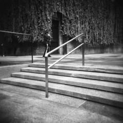 Milano (Valt3r Rav3ra - DEVOted!) Tags: holga holgacfn lomo lomography toycamera plasticcamera milano medioformato mediumformat 120 6x6 film analogico analogica analog analogue ilford ilfordfp4 bw biancoenero blackandwhite valt3r valterravera visioniurbane urbanvisions streetphotography street
