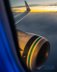 Sticking the 737-900ER Into the Clouds Under the Sunrise (AvgeekJoe) Tags: 737990 737990erwl aerialphotograph alaska114 alaskaair alaskaairlines alaskaflight114 boeing737 boeing737900 boeing737990 boeing737990erwl clouds d5300 dslr jetliners n423as nikon nikond5300 sunrise aerial aerialphoto aerialphotography aircraft airplane aviation cloud jetliner plane