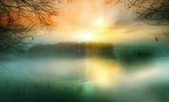 Sunny island. (augustynbatko) Tags: island lake water mist nature sun sky trees view shadows autumn