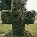 mossy gravestone
