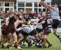 Preston Grasshoppers 22 - 27 Hudderrsfield January 05, 2019 36309.jpg (Mick Craig) Tags: 4g lancashire action hoppers prestongrasshoppers agp preston lightfootgreen union fulwood upthehoppers rugby huddersfield rugger sports uk