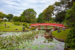 Japanese Garden (yc4646) Tags: architectural architecture ecology ecosystem environment environmentalism footbridge gardens grass lake landscape landscaping nature plants publicgarden scenery structures transport transportation tree water singapore