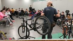 Jornada bici para grupos embajadores - IMG_20181220_105528 (Medioambiente Zaragoza) Tags: stars proyectostars zaragoza movilidad sostenible escolar
