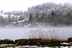 Brume sur le lac de Bad-Bayersoien-Bavière (Nathery Reflets) Tags: lac eau brouillard see badbayersoien bavière allemagne