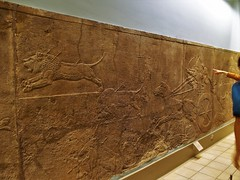 Assyria: Lion Hunts   645 – 635 BC (lukenotskywalker60) Tags: assyrian artefacts british museum asur ninova lion hunt