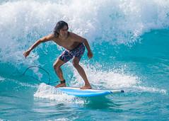 XT3A2747 (Rico Pfirstinger) Tags: haleiwa hawaii vereinigtestaaten us fujifilm fujixsecrets xpertcorner xt3 xf100400mmf4556rlmoiswr