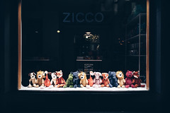 Evening's Line-up (Bunaro) Tags: fredrikinkatu helsinki city center finland suomi visitfinland myhelsinki dark evening display window stuffed animals toys canon m50 lineup