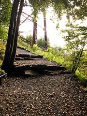 IMG_6412_eh (wyldanthem) Tags: allegheny national forest