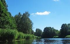 Вспоминая лето (lvv1937) Tags: лето река берег облака деревья flickrпорусскибезограничений3060 inexplore