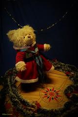 _DSC0752 (willdrewitsh) Tags: peluche plush teddy bear nounours doudou oliver william drewitsh stuffed toy animal