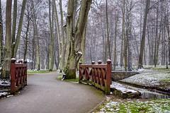 Little snow (Piotr Tylski) Tags: fujifilm xe1 fuji poland polska wejherowo landscape vacations nature art europe travel luminar skylum fujixcamera fujixseries fujix mirrorless park walk winter
