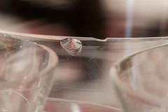 Glass damaged (Rafel Ramis) Tags: macro mondays pick two