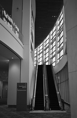 Going Up? (timmerschester) Tags: windows building detroit michigan cobohall