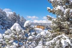Snow Angels (Erik C. Lindgren) Tags: landscapephotography landscape mountainscapes mountains winter weatherandtrains snow coloradorailways coloradorailroads coloradotrains coloradohighcountry colorado unionpacificmoffattunnelsubdivision unionpacific moffattunnel moffatsub moffattunnelsub moffattunnelsubdivision