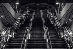 Upwardly, If Mobile (JeffStewartPhotos) Tags: ttc torontotransitcommission subway subwaystation station yorkuniversity toronto ontario canada blackandwhite blackwhite bw jsp2018111044 stairs up upwards lookingup towardstotop walkingwithpaulc