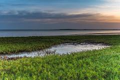 Sunrise over the Bay (Merrillie) Tags: grass daylight natural sunrise nature dawn daybreak sky lake morning newsouthwales marsh earlymorning nsw tuggerahlake wetland tuggerahlakes grasses wavedominatedbarrierestuary chittawaybay coastal landscape outdoors waterscape estuary centralcoast australia water