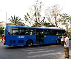 Samco City H68 CNG on bus line number 93: September 23rd park <-> Eastern bus terminal <-> Nông Lâm university in Ho Chi Minh city | Vehicle license plate: 51B - 255.23 (phanphuongphi) Tags: bus93 chobenthanh hyundai nghiatrangthanhpho congvien23thang9 daihocnonglamtphcm samco hyundaiaerocity cngbus caudienbienphu hyundaibus khuchexuatlinhtrung benthanhmarket buytsaigon ngvbus benxemiendong daihockinhteluattphcm ngatuhangxanh caubinhtrieu ngatulinhxuan chothuduc samcobus