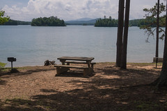 Lake Nottely (jwcjr) Tags: lakenottely lake galake lightshadow tree picnictable nga northga northgeorgia olympus