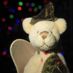 MM 24 December 2018: Holiday Bokeh (jefalump) Tags: macromondays holidaybokeh christmas miniature teddybear portrait
