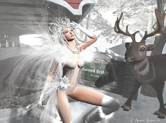 Virtual Trends: 1902 Snow Buck (Anaelah ~ Miss Virtual Diva ♛ 2018) Tags: irrisistible shop winter buck snow animal human outfit clothes braids fantasy rp roleplay sl second life secondlife white hairs boots moonboots shoes lingerie sexy