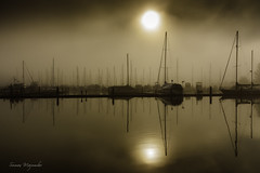 Foggy Sunday morning (suman.photo) Tags: fog marina water nature boats nikon washingtonstate olympia sun cloud
