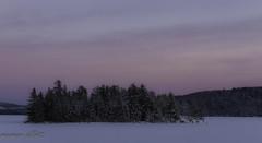 Island In The Pink (maureen.elliott) Tags: winterlandscape sunset pink skies island frozen algonquinpark lakeoftworivers nature snow