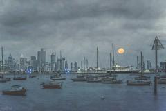 The Lure DSC_2440 (BlueberryAsh) Tags: moon supermoon williamstown night seascape ocean boats water boatclub city skyline nightscape nightphotography nikond750 nikon24120 bay moonlight moody stormy