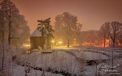 Der Rombergpark (Frank Heldt Photography) Tags: dortmund rombergpark nordrheinwestfalen deutschland de torhaus winter schnee langzeitbelichtung foto fotografie frankheldt 5dmarkiv hdr