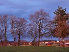 ...dunkler Himmel mit hellem Hintergrund..... (elisabeth.mcghee) Tags: abendrot abendhimmel abendsonne sunset sonnenuntergang himmel sky wolken clouds unterbibrach bäume trees wald forest oberpfalz upper palatinate landschaft landscape