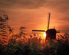 Sunset at Kinderdijk - Netherlands (Erik Graumans NL) Tags: windmill windmills molen molens kinderdijk nl holland netherlands sunset sky lucht