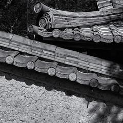 Roof tiles (Tim Ravenscroft) Tags: tiles roof detail wall kyoto japan hasselblad hasselbladx1d monochrome blackandwhite blackwhite