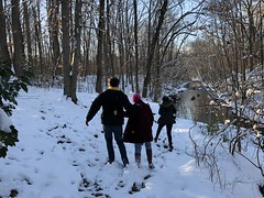 Exploring (rachelkidwell93) Tags: snow winter nature forest trees cold freeze freezing flake snowflake trail hike walk park sun sunny sky blue bright adventure travel outdoors mountain mountains virginia people person walking explore friends couple group ice icy together action melt melting weather