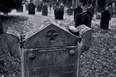 Hier ruht in Frieden unser liebes Kind (nordelch61) Tags: worms friedhof jüdisch heiliger sand alt 2500 grabsteine 11jahrhundert unescoweltkulturerbe