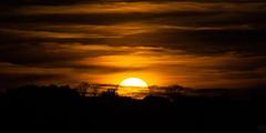 Sunset / @ 300 mm / 2018-11-10 (astrofreak81) Tags: clouds shadow schatten sunset sun wolken sonnenuntergang sonne sky himmel heaven light dawn orangesky orange dresden 20181110 astrofreak81 sylviomüller sylvio müller