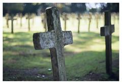 Begraafplaats Veenhuizen _ 6 (leo.roos) Tags: grave graf cross kruis veenhuizen begraafplaats kerkhof cemetery graveyard a7rii carlzeissjenabiotar5014 czj cinelens 16mm pentaflexak16 darosa leoroos