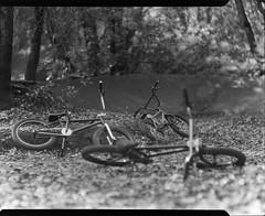 bikes on 4x5 film (Garrett Meyers) Tags: graflexseriesd4x5 garrettmeyers largeformat filmphotographer film graflex graflex4x5 blackandwhitefilm homedeveloped northerncalifornia clouds cloudscape forest storm