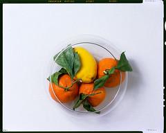 Fruit on Chrome (FilmstripLeads) Tags: velvia e6 film fruit cambo nikon nikkor 300mm 300 56 f56 fuji fujifilm 100 citrus lemon orange glass canvas studio study lighting still life slide chrome epson wet scan v700