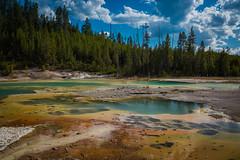 Yellowstone (Altewegier) Tags: yellowstone national park geysir nature colors america usa wildnature volcano sulphur sulphuric