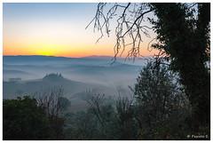 ... il arrive (Pascale_seg) Tags: leverdesoleil soleil sunrise sunrising matin morning paysage landscape collines toscane toscana tuscany italie italia mist misty nebbia fog tree countryside night
