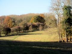 Autumn View (paidetres) Tags: heaverham kent walk autumn