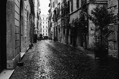 Rione VI Parione, Rome (Postcards from San Francisco) Tags: konicahexaraf film analog berggerpancro400 rodinal roma italia
