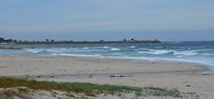 Morning tide (afagen) Tags: california pacificgrove asilomarstatebeach montereypeninsula asilomar beach pacificocean ocean